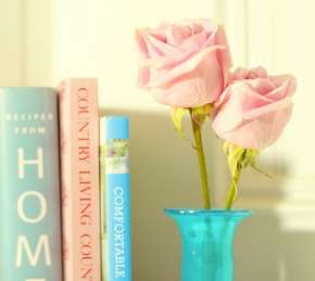 Favorite Bookish Quotes from2012